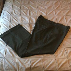 Gap Modern Boot Dress Pants